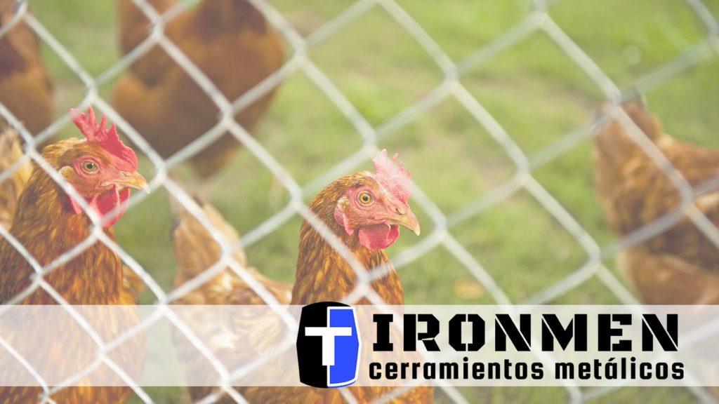 Foto de Cerramientos Ironmen: valiosos consejos para la elección