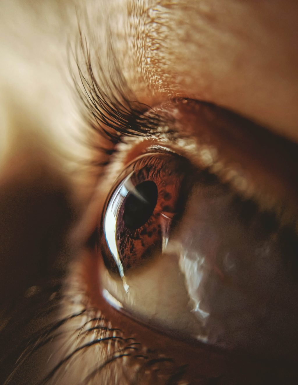 Foto de Interesante mesa redonda sobre el síndrome del Ojo Seco en
